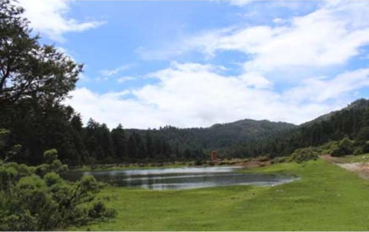 Foto de terreno habitacional en venta en  , san vicente, mineral del monte, hidalgo, 519705 No. 12