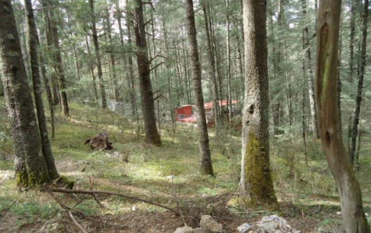 Foto de terreno habitacional en venta en  , san vicente, mineral del monte, hidalgo, 803023 No. 03