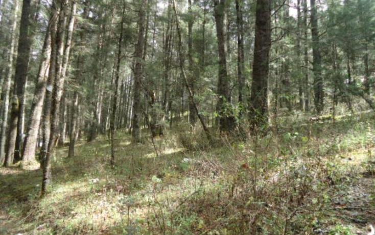 Foto de terreno habitacional en venta en, san vicente, mineral del monte, hidalgo, 803023 no 04