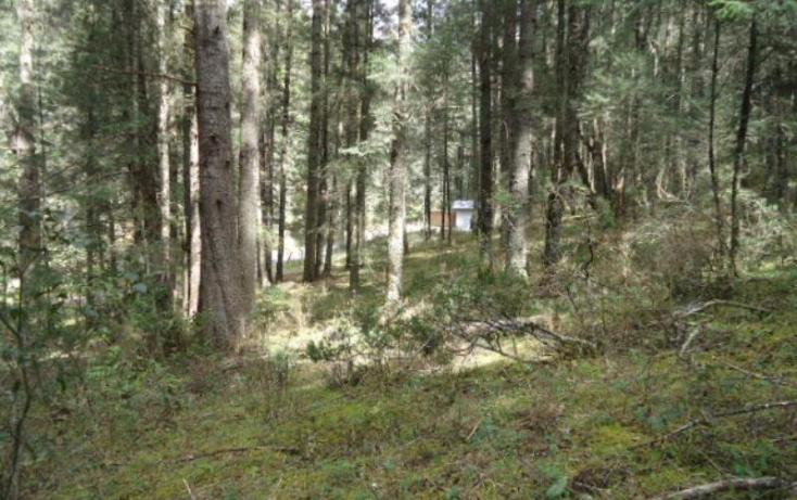 Foto de terreno habitacional en venta en, san vicente, mineral del monte, hidalgo, 803023 no 05