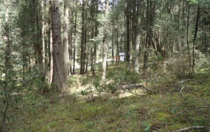 Foto de terreno habitacional en venta en  , san vicente, mineral del monte, hidalgo, 803023 No. 05