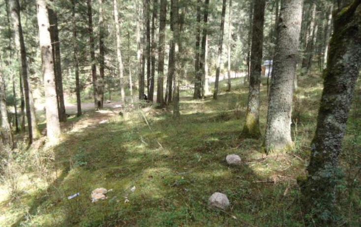 Foto de terreno habitacional en venta en  , san vicente, mineral del monte, hidalgo, 803023 No. 06