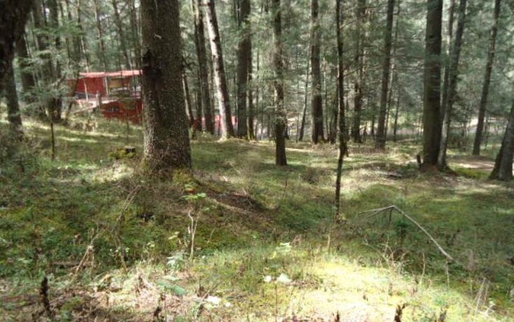 Foto de terreno habitacional en venta en  , san vicente, mineral del monte, hidalgo, 803023 No. 07