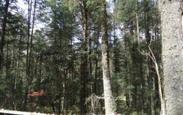 Foto de terreno habitacional en venta en  , san vicente, mineral del monte, hidalgo, 803023 No. 10