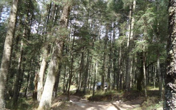 Foto de terreno habitacional en venta en  , san vicente, mineral del monte, hidalgo, 803023 No. 11