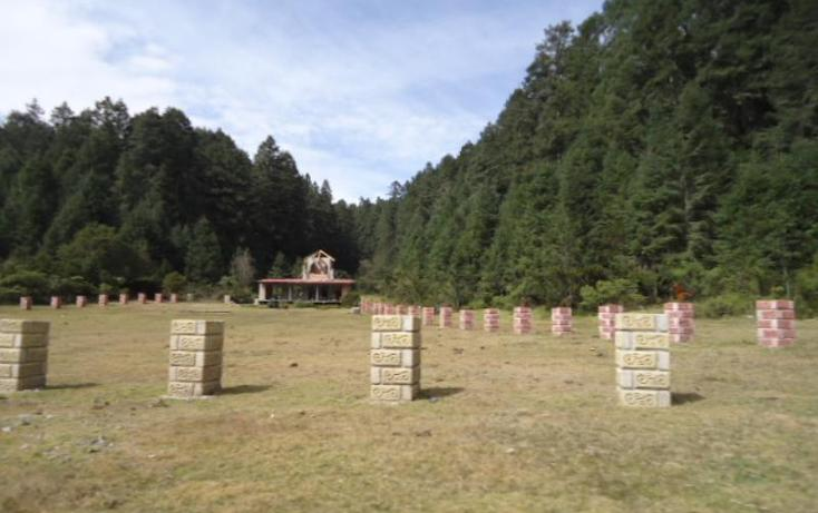 Foto de terreno habitacional en venta en  , san vicente, mineral del monte, hidalgo, 803023 No. 18