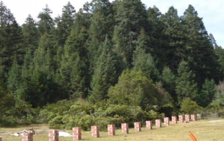 Foto de terreno habitacional en venta en, san vicente, mineral del monte, hidalgo, 803023 no 19