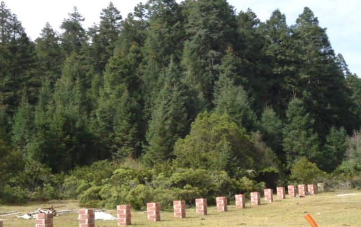 Foto de terreno habitacional en venta en  , san vicente, mineral del monte, hidalgo, 803023 No. 19