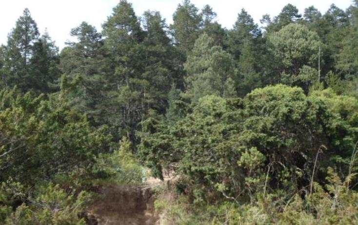 Foto de terreno habitacional en venta en  , san vicente, mineral del monte, hidalgo, 803023 No. 22