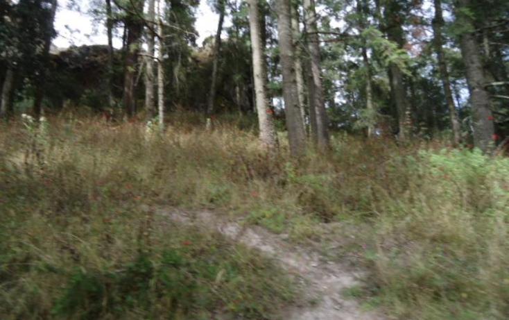 Foto de terreno habitacional en venta en  , san vicente, mineral del monte, hidalgo, 803023 No. 30