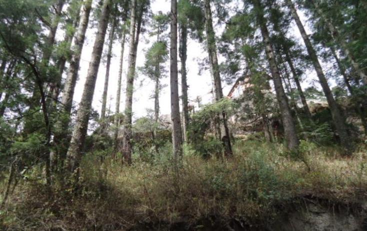 Foto de terreno habitacional en venta en  , san vicente, mineral del monte, hidalgo, 803023 No. 31
