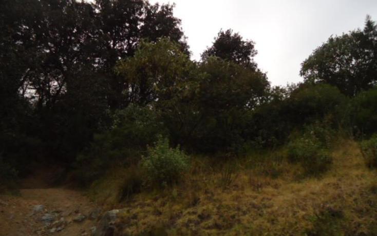 Foto de terreno habitacional en venta en  , san vicente, mineral del monte, hidalgo, 803023 No. 36