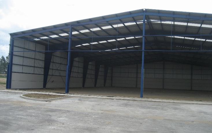 Foto de nave industrial en renta en  , sanctorum, cuautlancingo, puebla, 1114157 No. 04
