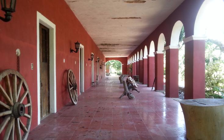 Foto de rancho en venta en  , sanlatah, tekantó, yucatán, 1071349 No. 04