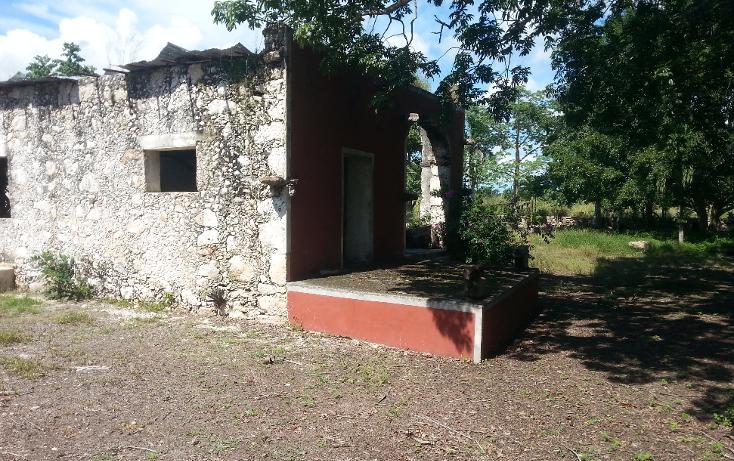 Foto de rancho en venta en  , sanlatah, tekantó, yucatán, 1071349 No. 12