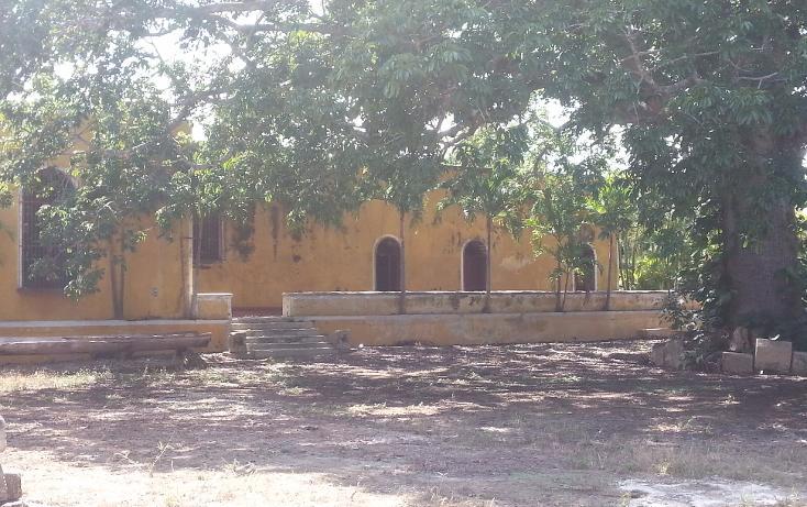 Foto de rancho en venta en  , sanlatah, tekantó, yucatán, 1071349 No. 14