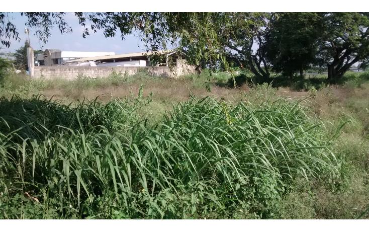 Foto de terreno habitacional en venta en  , santa amalia, altamira, tamaulipas, 1249923 No. 02