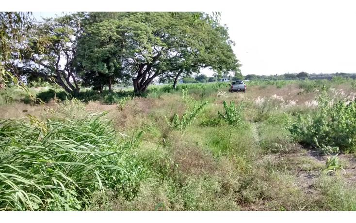 Foto de terreno habitacional en venta en  , santa amalia, altamira, tamaulipas, 1249923 No. 03
