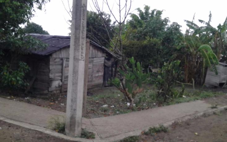 Foto de terreno habitacional en venta en  , santa amalia, altamira, tamaulipas, 1990428 No. 02