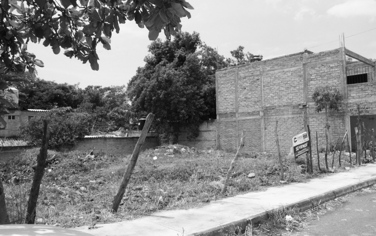 Foto de terreno comercial en venta en  , santa amalia, colima, colima, 1291213 No. 02