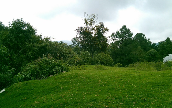 Foto de terreno habitacional en venta en  , santa ana jilotzingo, jilotzingo, méxico, 1132273 No. 02