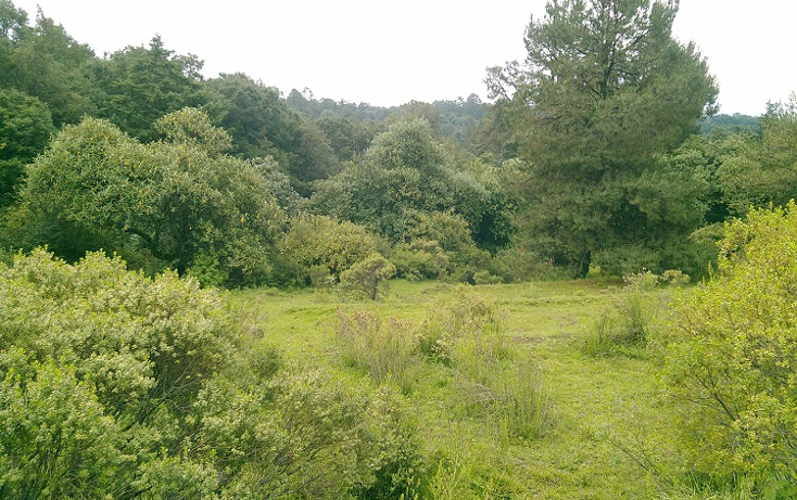 Foto de terreno habitacional en venta en  , santa ana jilotzingo, jilotzingo, méxico, 1132273 No. 03
