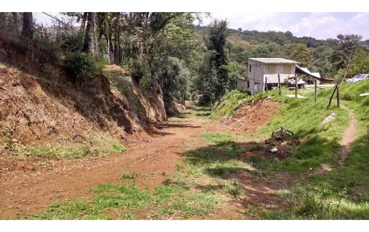 Foto de terreno habitacional en venta en  , santa ana jilotzingo, jilotzingo, méxico, 1259221 No. 02