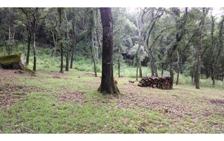 Foto de terreno habitacional en venta en  , santa ana jilotzingo, jilotzingo, méxico, 1259221 No. 03