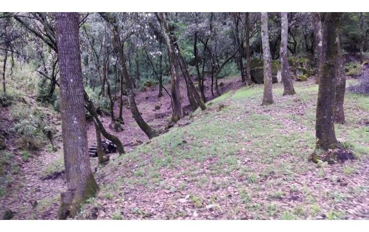 Foto de terreno habitacional en venta en  , santa ana jilotzingo, jilotzingo, méxico, 1259221 No. 04