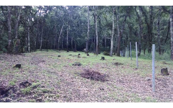 Foto de terreno habitacional en venta en  , santa ana jilotzingo, jilotzingo, méxico, 1259221 No. 05