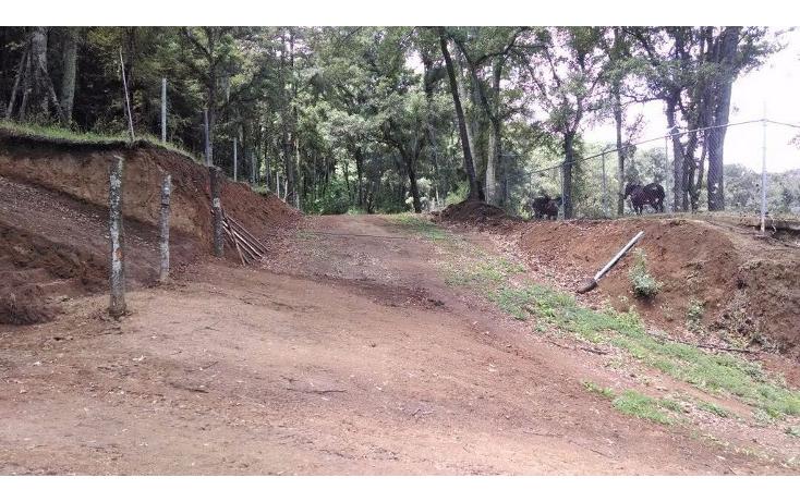 Foto de terreno habitacional en venta en  , santa ana jilotzingo, jilotzingo, méxico, 1259221 No. 06