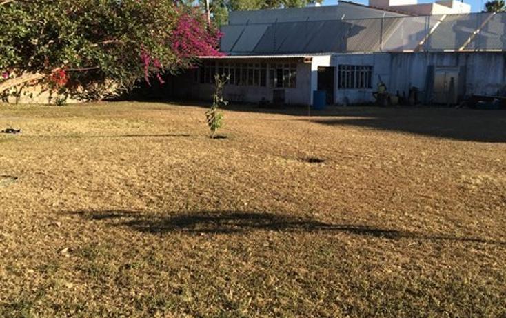 Foto de terreno habitacional en venta en  , santa ana tepetitlán, zapopan, jalisco, 2034130 No. 04
