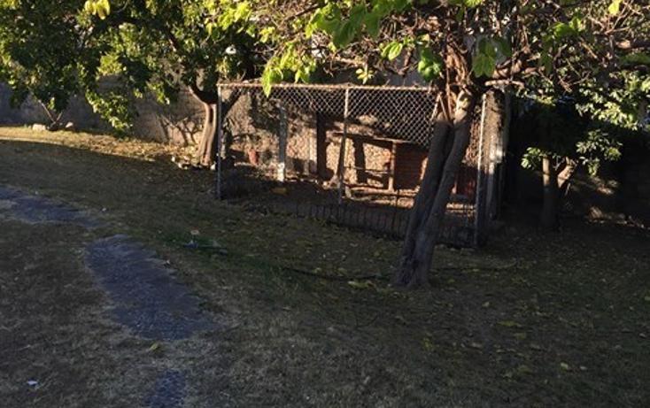 Foto de terreno habitacional en venta en  , santa ana tepetitlán, zapopan, jalisco, 2034130 No. 05