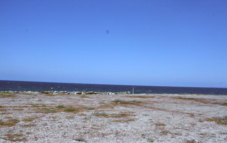 Foto de terreno comercial en venta en  , santa anita, ensenada, baja california, 1196317 No. 11