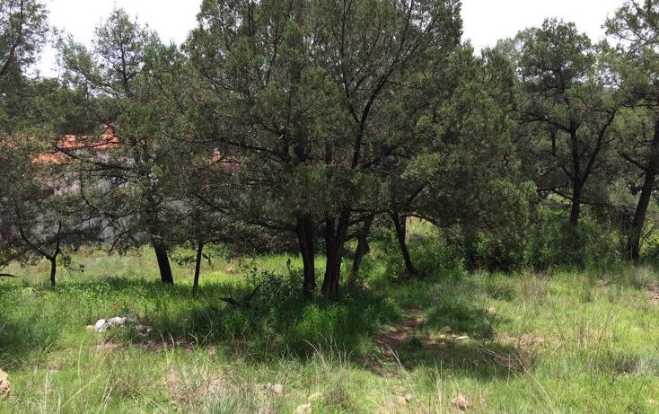 Foto de terreno habitacional en venta en  , santa anita huiloac, apizaco, tlaxcala, 1086033 No. 05