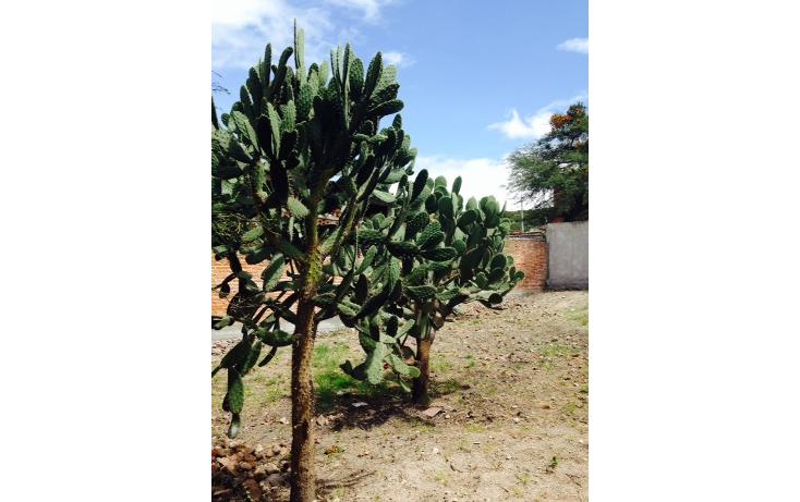 Foto de terreno habitacional en venta en  , santa cecilia, san miguel de allende, guanajuato, 2045177 No. 08