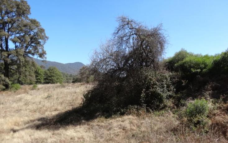 Foto de terreno industrial en venta en  , santa clara del cobre, salvador escalante, michoac?n de ocampo, 1395021 No. 07