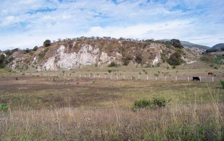 Foto de terreno comercial en venta en, santa cruz de las flores, tlajomulco de zúñiga, jalisco, 1930018 no 04