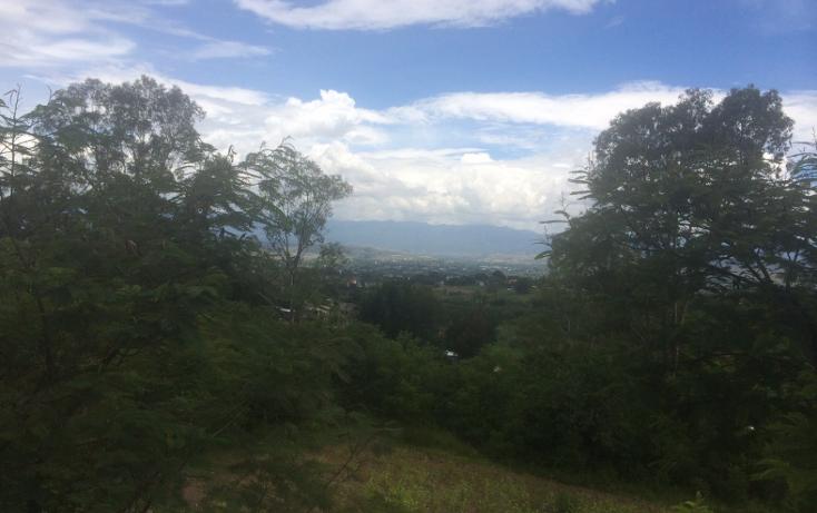 Foto de terreno habitacional en venta en  , santa cruz etla, san pablo etla, oaxaca, 1258301 No. 01