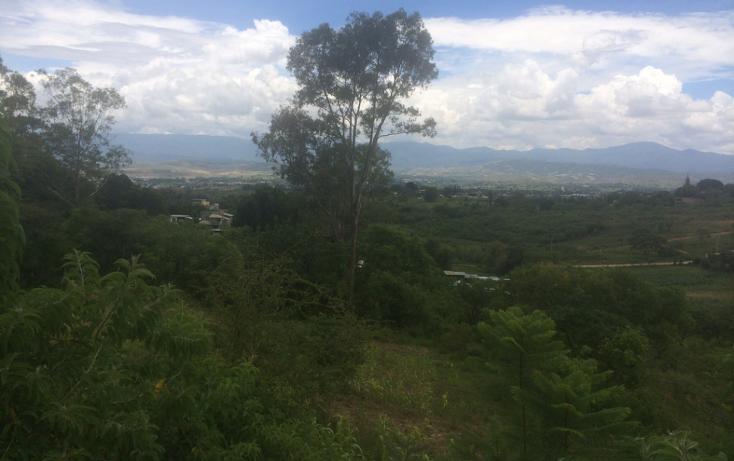 Foto de terreno habitacional en venta en  , santa cruz etla, san pablo etla, oaxaca, 1258301 No. 04