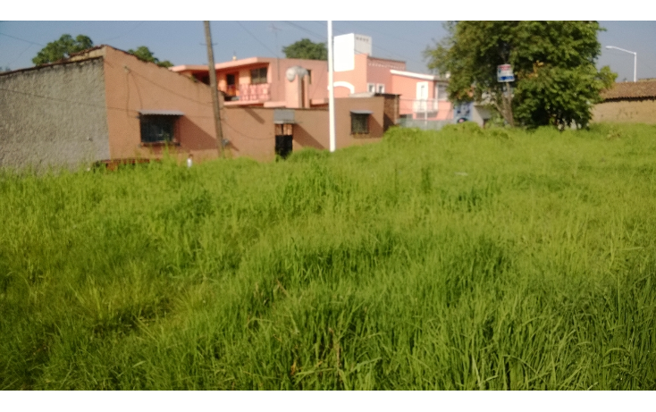 Foto de terreno habitacional en venta en  , santa cruz, metepec, méxico, 1272613 No. 03