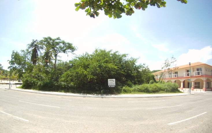Foto de terreno comercial en venta en  , santa cruz sector a, santa maría huatulco, oaxaca, 1269867 No. 02