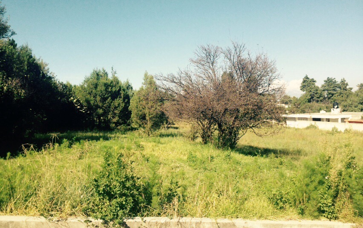 Foto de terreno habitacional en venta en  , santa cruz tlaxcala, santa cruz tlaxcala, tlaxcala, 1357555 No. 02