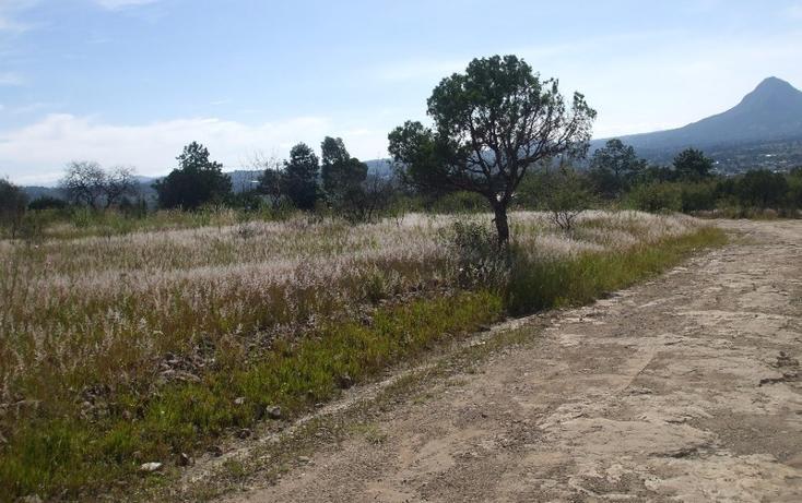 Foto de terreno habitacional en venta en  , santa cruz tlaxcala, santa cruz tlaxcala, tlaxcala, 1859856 No. 01