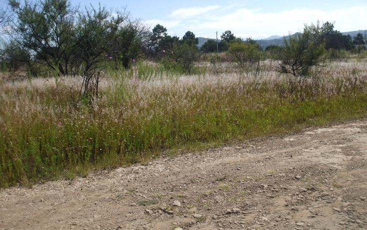 Foto de terreno habitacional en venta en  , santa cruz tlaxcala, santa cruz tlaxcala, tlaxcala, 1859856 No. 03