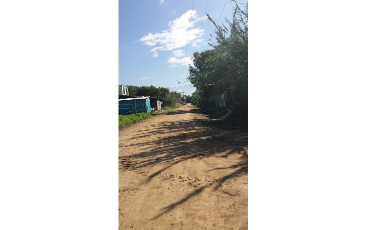 Foto de terreno habitacional en venta en  , santa cruz xoxocotlan, santa cruz xoxocotl?n, oaxaca, 786269 No. 03