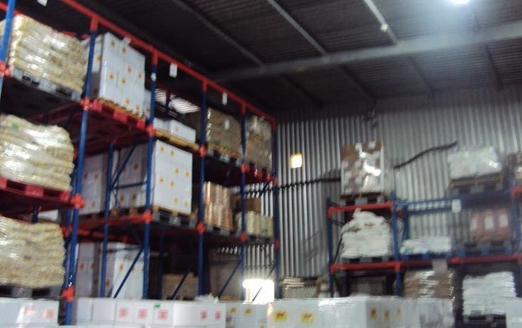 Foto de nave industrial en renta en  , santa elena alcalde poniente, guadalajara, jalisco, 2045769 No. 04