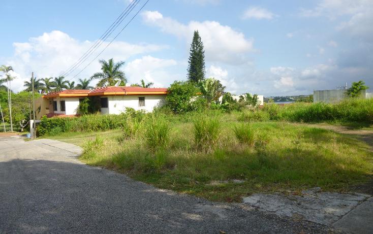 Foto de terreno comercial en venta en  , santa elena, pánuco, veracruz de ignacio de la llave, 1776924 No. 02