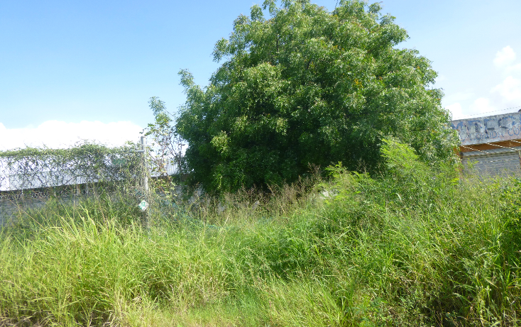 Foto de terreno comercial en venta en  , santa elena, pánuco, veracruz de ignacio de la llave, 1776924 No. 03