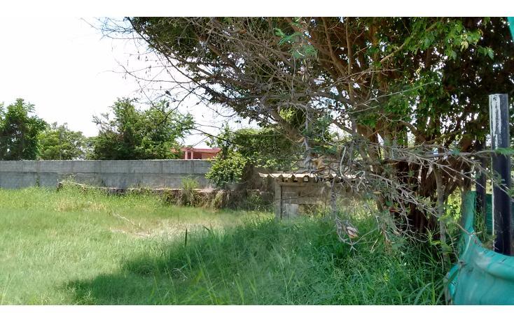 Foto de terreno comercial en venta en  , santa elena, pánuco, veracruz de ignacio de la llave, 2034242 No. 08